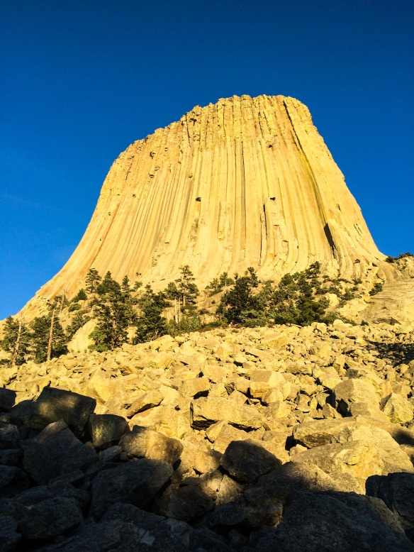 The famous Devil's Tower in South Dakota.